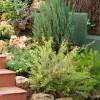 Como preparar el jardín en primavera: tierras y sustratos de cultivo