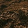 ¿Por qué es importante usar materia orgánica en los cultivos?