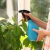 Cómo evitar los bichos en la tierra de las macetas