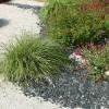 Xerojardinería o jardines de bajo consumo de agua