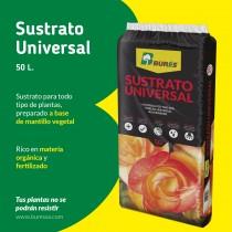 Sutrato Universal Burés, un producto perfecto para tus plantas ornamentales