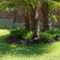 (ES) Videotutorial: ¿Cómo se aplican los acolchados de jardín?