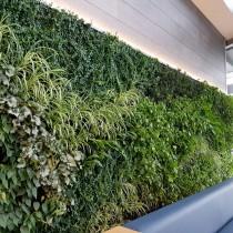 (ES) Jardines verticales: la inspiración verde