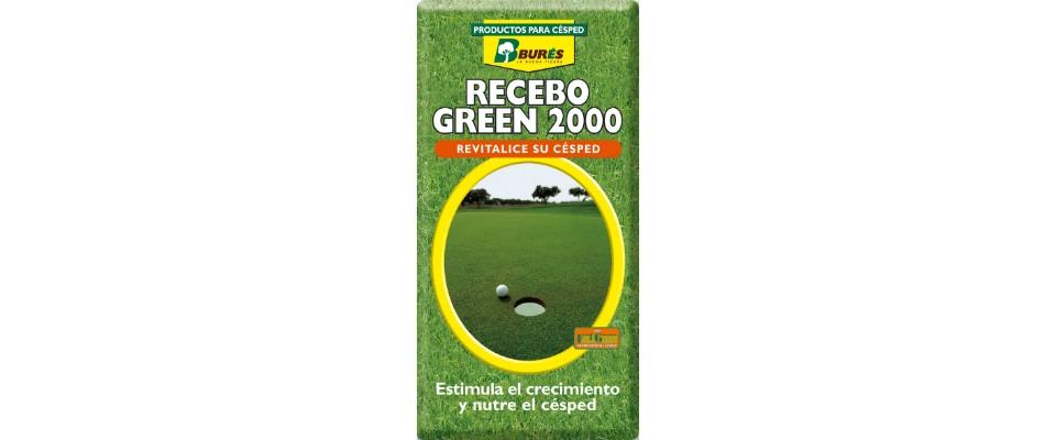Recebo Green 20001