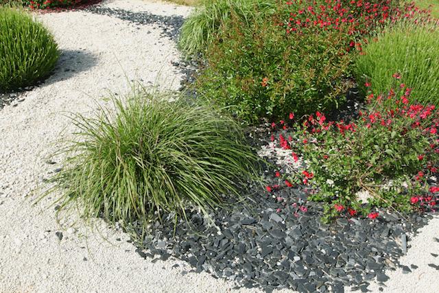 Xerojardiner a o jardines de bajo consumo de agua - Jardines con poco mantenimiento ...