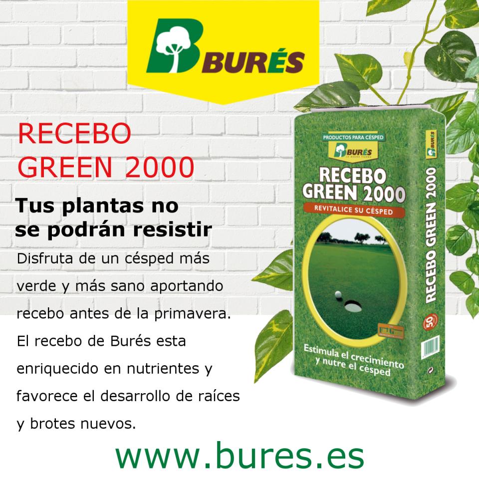 RECEBO GREEN 2000